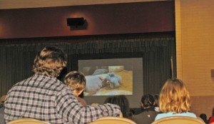 Martin Tyner shared a PowerPoint presentation about birds of prey in the western U.S. at North Elementary School on Monday, this is a slide of one day old baby kestrel falcons, Cedar City, Utah, Feb. 2, 2015 | Photo by Carin Miller, St. George News