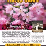 LotusBrain2_letter_02052015a-01-1