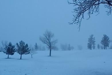 Bloomington Golf Course, St. George, Utah, Feb. 23, 2015, 7:15 a.m. | Photo by Joyce Kuzmanic, St. George News