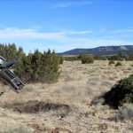 An agra-axe after removal of a conifer tree as part of grassland restoration, Kaibab National Forest, date unspecified   Photo courtesy of the National Forest Service, St. George News