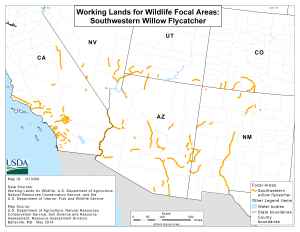 Map of Southwestern willow flycatcher focal areas | Image courtesy of U.S. Department of Agriculture | St. George News | Click on map to enlarge