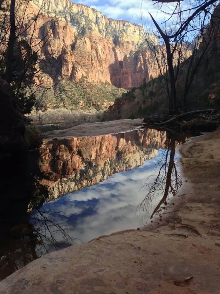 Zion National Park, Utah, March 2014 | Photo courtesy of Andrea Lanthier, St. George News