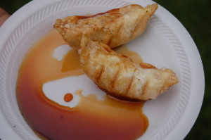 Pot stickers from Benja Thai are just one of the many culinary delights available to try at the Southern Utah Culinary Festival, St. George, Utah, April 24, 2015 | Photo by Hollie Reina, St. George News