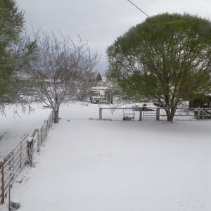 Snow cover in Paragonah on Wednesday morning, Paragonah, Utah, April 8, 2015 | Photo courtesy of Kelsie Trunnell, St. George News