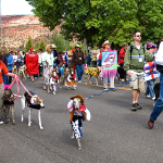 The costume parade at the Greyhound Gathering, Kanab, Utah, May 10, 2014 | Photo courtesy of the City of Kanab, St. George News