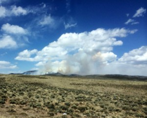 A wildfire burns in Sevier County, Utah, April 14, 2015 | Photo courtesy of Julie Trevelyan, St. George News