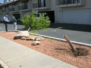 Landscaping damage from Monday's accident at 300 South and 200 W in St. George April 6, 2015 | Photo by Ric Wayman, St. George News