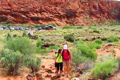 snow canyon FI