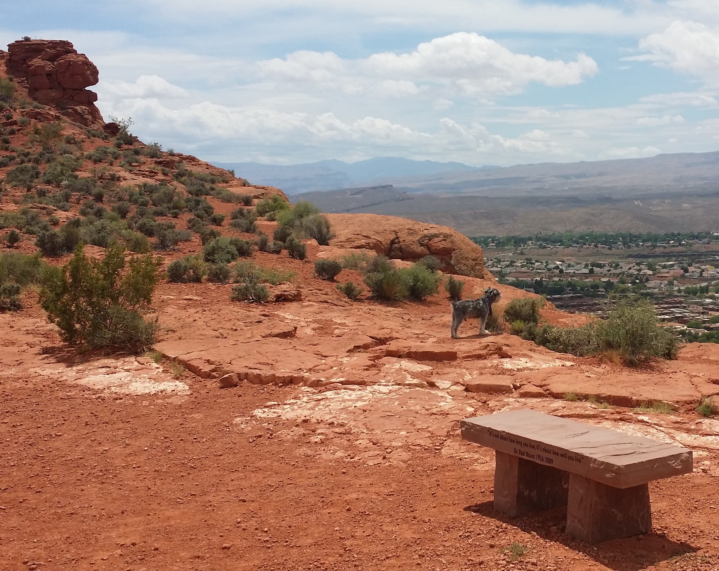 "Bench in memorial to Dr. Paul Navar on Paradise Rim, where he died of a heart attack, inscribed with one of his life-mottos: ""It's not about how long you live, it's about how well you live."" Red Cliffs National Recreation Area, Washington County, Utah, May 22, 2015 