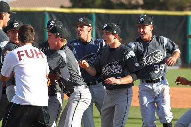 Pine View celebrates its victory over Cedar and their berth in the State Championship game, Pine View vs. Cedar, Baseball, St. George, Utah, May 15, 2015 | Photo by Robert Hoppie, ASPpix.com, St. George News