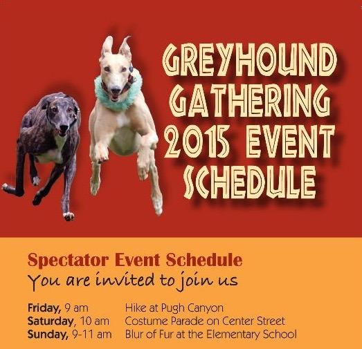Greyhound Gathering public events