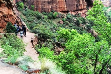 Angels Landing Trail on a rainy day, Zion National Park, Utah, April 25, 2015 | Photo by Cami Cox Jim, St. George News