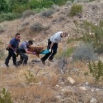 A black bear sighted on the Arizona Strip was shot and killed by Arizona Fish and Game, Desert Springs, Arizona, May 23, 2015 | Photo courtesy of Rex Hoyt, St. George News