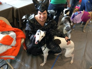 Pam Shane, of Roy, Utah, is dressed as Maleficent while greyhound Abby is dressed as Raven at the Greyhound Gathering, Kanab, Utah, May 9, 2015 | Photo by Cami Cox Jim, St. George News