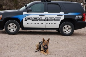 K-9 VooDoo, date and location not specified | Photo courtesy of Cedar City Police Department, St. George News