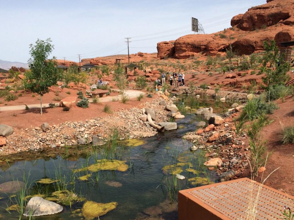 Red Hills Desert Garden Opens To Public Stgnews Videocast