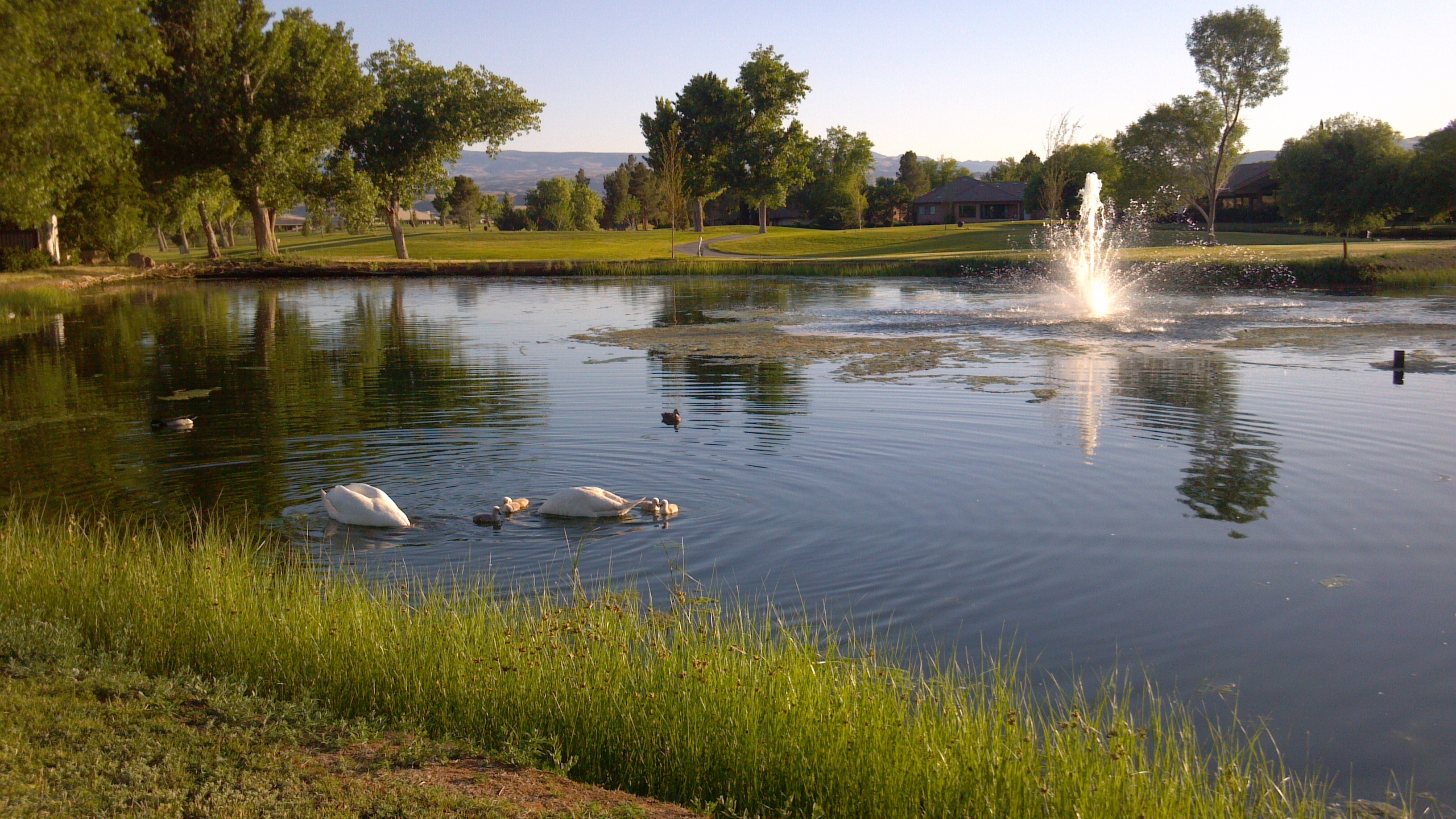 Bloomington Country Club, St. George, Utah, May 2012 | Photo by Joyce Kuzmanic, St. George News