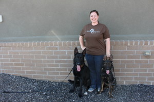 K-9 Tank and Vinnie with Ricki Draper, Havoc K-9 Executive Director, Washington County UT |Photo Courtesy of Jessica Tempfer, St. George News