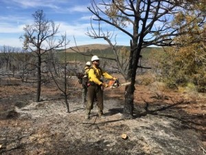 Cedar City Hot Shots conduct mop-up on the Wolf Hole Fire on the BLM Arizona Strip, date unspecified | Photo courtesy of Bureau of Land Management