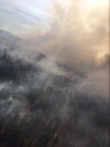 Forest Service treats 2,000 acres with prescribed fire in the Dave's Hollow area near Bryce Canyon City, Utah, June 3-4, 2015 | Photo courtesy of Dixie National Forest, St. George News