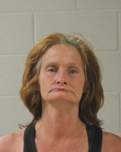 Rebecca Diane Bowes, of St. George, Utah, booking photo posted May 30, 2015   Photo courtesy of the Washington County Sheriff's Office, St. George News