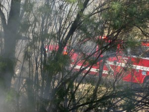A brush fire briefly threatened homes Monday morning just off Tonaquint Drive, St. George, Utah, June 17, 2015 | Photo by Ric Wayman, St. George News
