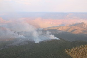The Mt. Emma Fire has burned 4,000 acres in 5 days, Arizona Strip, Arizona, June 29, 2015 | Photo courtesy of the Bureau of Land Management Arizona Strip, St. George News