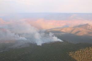 The Mt. Emma Fire has burned 4,000 acres in 5 days, Arizona Strip, Arizona, June 29, 2015   Photo courtesy of the Bureau of Land Management Arizona Strip, St. George News