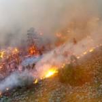The Mt. Emma Fire has burned 4,000 acres in 5 days, Arizona Strip, Arizona, June 25, 2015 | Photo courtesy Alan Syphus, Bureau of Land Management Arizona Strip, St. George News