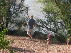 A quick-thinking neighbor was able to contain a brush fire until firefighters arrived, St. George, Utah, June 17, 2015 | Photo by Ric Wayman, St. George News