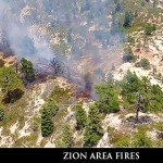 Zion Fires