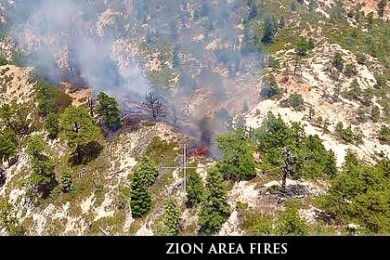 Zion Fires