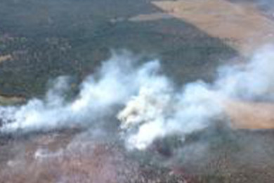 The High Meadow Fire, Grand Canyon-Parashant National Monument, Arizona, date not specified | Photo courtesy of  Arizona Strip District Public Affairs, St. George News