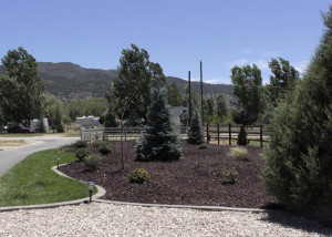 Fresh landscaping recently put in for the wedding by New Harmony residents Thayne and Vickie Colvin who had a house fire Thursday  morning, 1006 S. Harmony Point Drive, New Harmony, Utah, July 09, 2015 | Photo by Carin Miller, St. George News