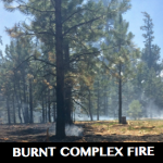 Burnt Complex Fire on the North Kaibab Ranger District, Arizona, July 18, 2015 | Photo courtesy of Kaibab National Forest, St. George News