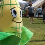 "A life size corn walks around at ""Enterprise Cornfest,"" Enterprise, Utah, August 29, 2015 