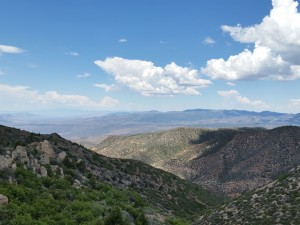 View from a fire lookout tower atop Mt. Elly, Nevada, June 13, 2015 | Photo by Julie Applegate, St. George News