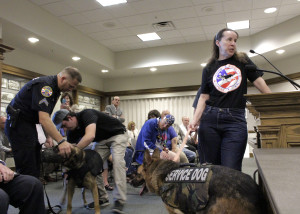 Vesting America's Police K-9's founder Cathy Williams describes vests at City Council as CCPD K-9 Duco receives his first vest,  Cedar City Council Chambers, Cedar City, Utah, August 12, 2015 | Photo by Carin Miller, St. George News