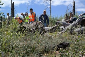 Emergency responders and volunteers search for 5-year-old Jerold Williams, Jacob Lake, Arizona, Aug. 8 2015 | Photo courtesy of Coconino County Sheriff's Office, St. George News