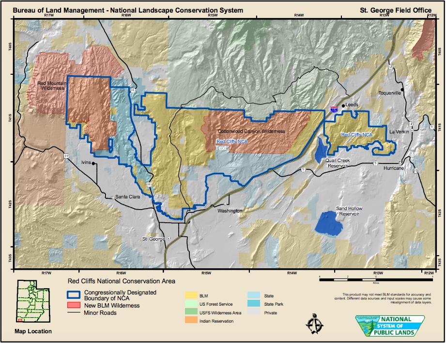 Red Cliffs National Conservation Area | Image courtesy of Bureau of Land Management