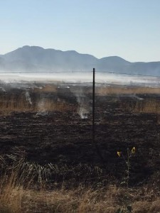 A fire spanning 50 acres is believed to have been caused by a bird, Cedar City, Utah, Aug. 18, 2015 | Photo courtesy of Iron County Sheriff's Office, St. George News