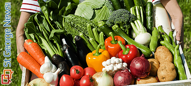 Time to start planning fall vegetable gardens free workshop St