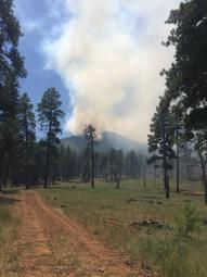 High Meadow Fire, Grand Canyon-Parashant National Monument, July 27, 2015 | Photo courtesy of InciWeb, St. George News