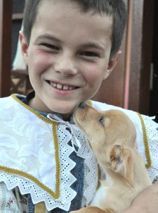 Tuacahn performers will take the stage Aug. 29 to raise money for Ivins Animal Shelter, photo date and location not specified | Photo courtesy of Tuacahn, St. George News