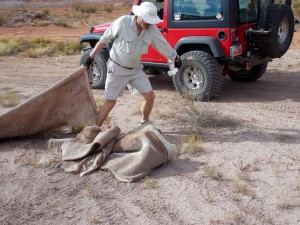 Bud Sanders gathers garbage from the Washington Dam staging area as part of the Desert Roads and Trails Society cleanup effort. Hurricane, Utah, Sept. 26, 2015 | Photo courtesy Desert RATS, exclusive to St. George News