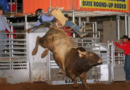 Corey Navarre meets his match on a Bar T Rodeo bull during a previous Dixie Roundup, St. George, Utah, date not specified | Photo courtesy Bar T Rodeo company, St. George News