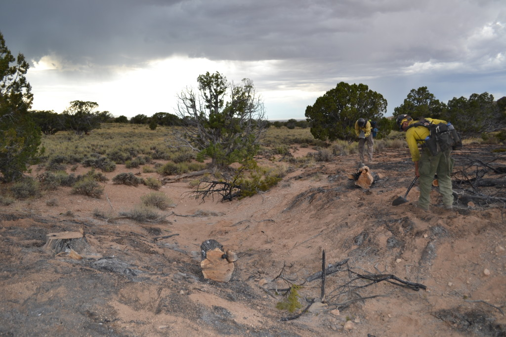 A lightning-caused wildfire burned some Cedar trees by the Cedar City Shooting Range, Cedar City, Utah, Sept. 13, 2015 | Photos by Emily Hammer, St. George News