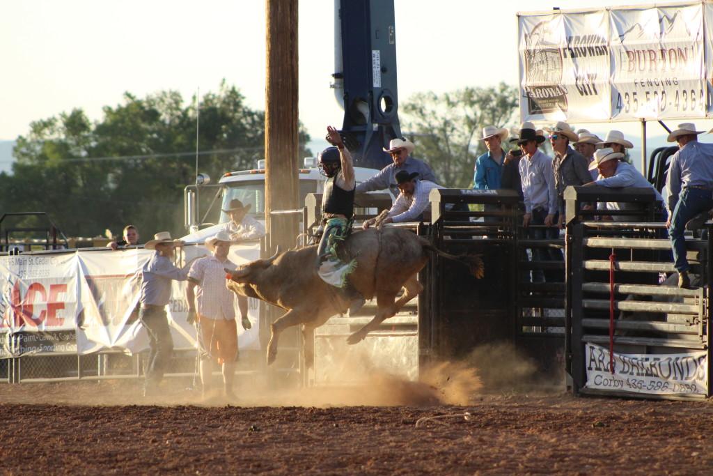 A bull-rider at the rodeo, Iron County Fair, Parowan, Utah, Sept. 6, 2015 | Emily Hammer St. George News