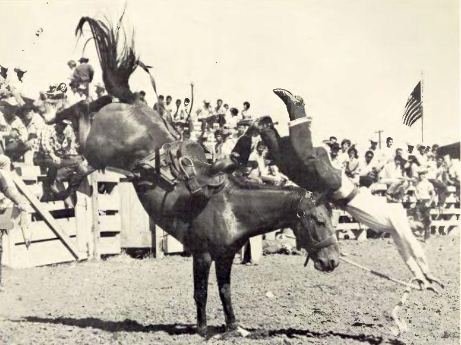 Creg Cabrai leaves a bronc during the 1960 Dixie Roundup, St. George, Utah, 1960 |Archive photo St. George News