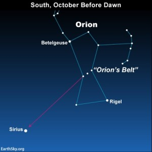 The constellation Orion is the radiant point for the Orionid meteor shower   Image courtesy of Earthsky.org, St. George News   Click image to enlarge